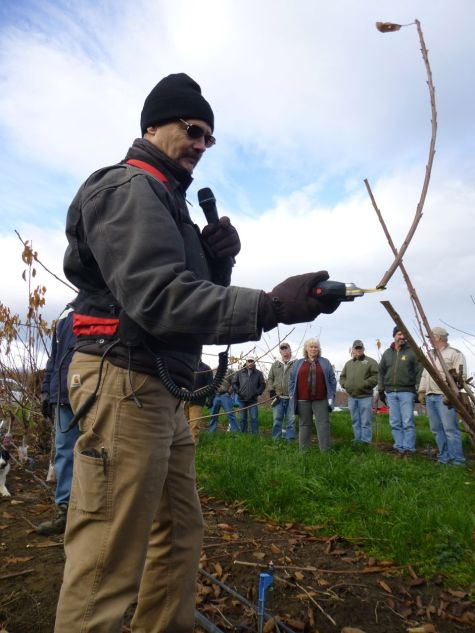 Tim Dahle shows pruning technique